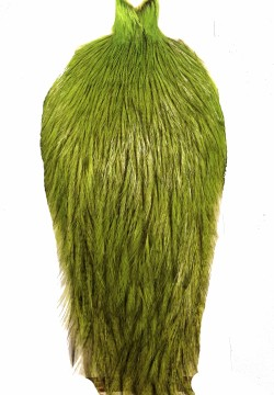 Whiting Coq De Leon Rooster Cape badger fl green chartreuse