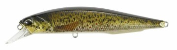 Realis Jerkbait 120SP Brown Trout ND