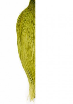 Whiting High & Dry 1/2 Cape white dyed olive