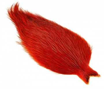 Whiting Coq De Leon Rooster Cape badger orange