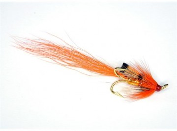 Allys Shrimp Gold #8