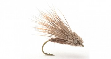 Streaking Caddis #8