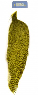 Whiting High & Dry 1/2 Cape grizzly dyed olive