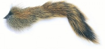 Pine Squirrel tail natural