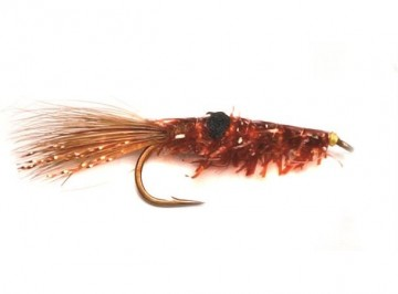 Copper shrimp #8
