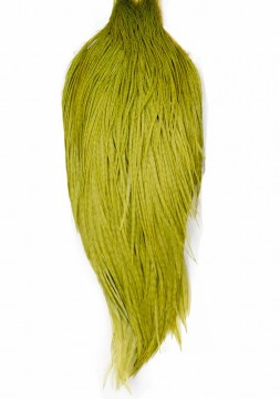 Whiting High & Dry Cape white dyed olive