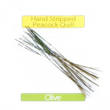 Stripped Peacock Quills Olive