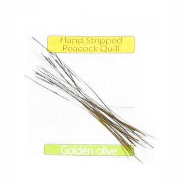 Stripped Peacock Quills Golden Olive